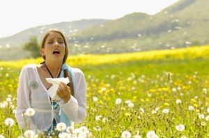 treating allergies and asthma